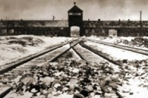 The Auschwitz Album: Proof of Jesuit Papacy's SS-led Eurasian Jewish Holocaust