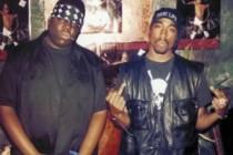 Majority Savage Blacks Gang-Fighting in Jesuit-ruled Houston and St. Louis